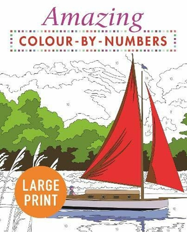 Amazing Colour by Numbers Large Print