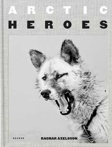 Arctic Heroes: A Tribute to the Sled Dogs of Greenland