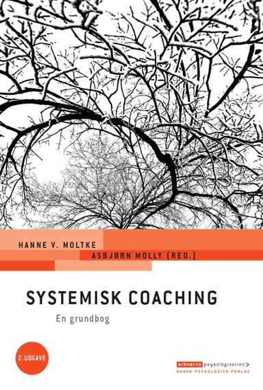 Systemisk coaching, 2. udgave