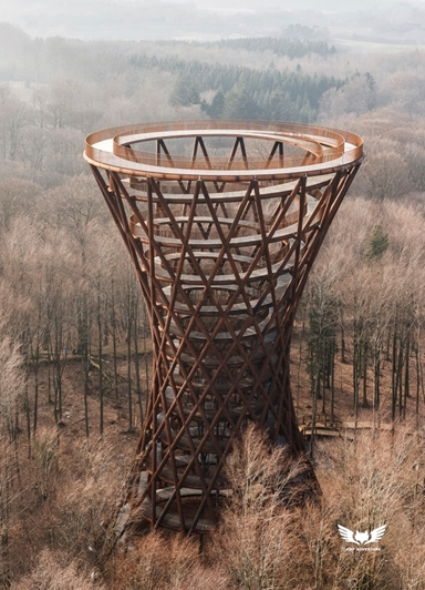 The Forest Tower